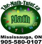 The Math Tutor